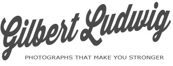 Gilbert Ludwig logo
